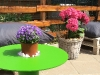 table-and-flowers
